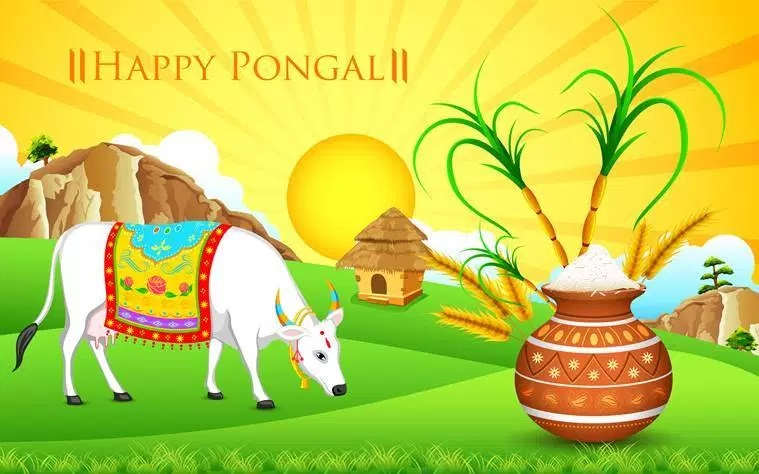 Pongal Festival 200 to 500 Words Essays, Notes, Articles, Paragraphs and Speech on Pongal Festival in English